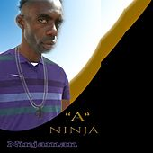Play & Download A Ninja - Single by Ninjaman | Napster