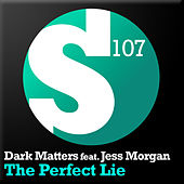 The Perfect Lie by Dark Matters
