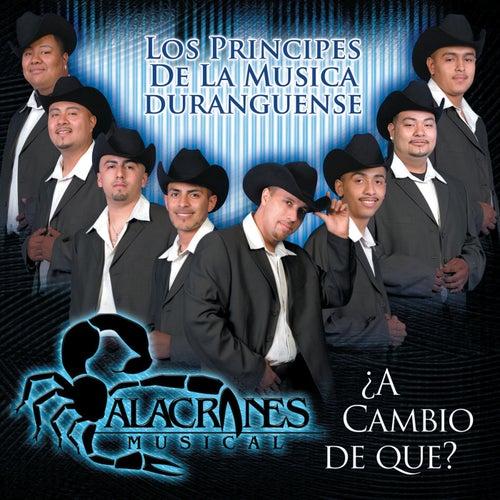 Play & Download A Cambio de Que by Alacranes Musical | Napster