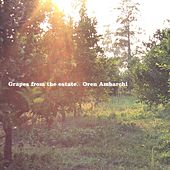Play & Download Grapes from the Estate by Oren Ambarchi | Napster