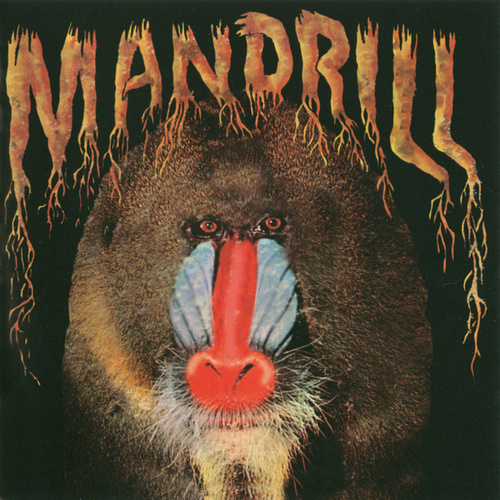 Play & Download Mandrill by Mandrill | Napster