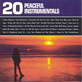 Play & Download 20 Peaceful Instrumentals by Christopher Davis | Napster