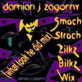 Smoch Stroch Zilkz Bilkz Wix (What Took He Did Mix) von Damian J Zagorny