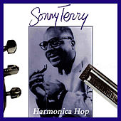 Harmonica Blues by Sonny Terry