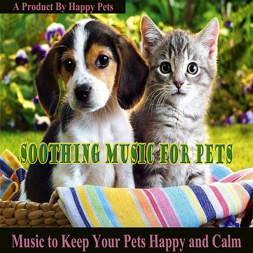 Play & Download Soothing Music for Pets by Various Artists | Napster