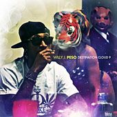 Destination Cloud 9 by Willy J Peso