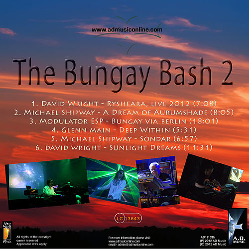 Play & Download The Bungay Bash 2 by Various Artists | Napster