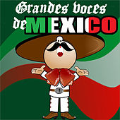 Grandes Voces de Mexico by Various Artists