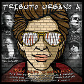 Play & Download Tributo Urbano A Hector Lavoe by Various Artists | Napster