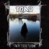 Play & Download Rotten Tide by Toad | Napster