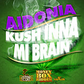 Kush Inna Mi Brain - Single by Aidonia