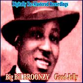 Play & Download Good Jelly by Big Bill Broonzy | Napster
