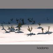 Spira Mirablis by Kodomo