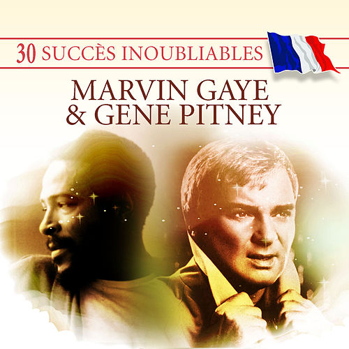 Play & Download 30 Succès inoubliables : Marvin Gaye & Gene Pitney by Various Artists | Napster