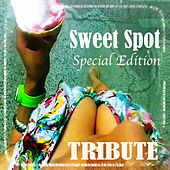 Sweet Spot (feat. Jennifer Lopez Special Edition Tribute) by The Dream Team