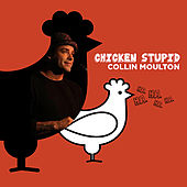 Play & Download Chicken Stupid by Collin Moulton | Napster