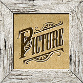 Picture (I Put Your Picture Away) - Single by The Picture