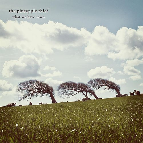 Play & Download What We Have Sown (2012 remastered reissue) by The Pineapple Thief | Napster