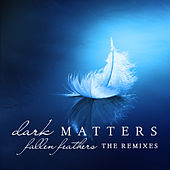 Play & Download Fallen Feathers (The Remixes) by Dark Matters | Napster