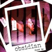 Fred by Obsidian