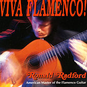 Viva Flamenco by Ronald Randford