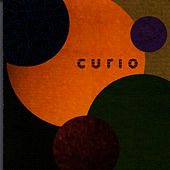 Curio by Angela McCluskey