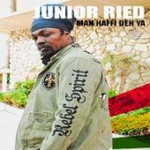 Man Haffi Deh Ya by Junior Reid