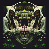 The Courage Of Others (Deluxe Version) by Midlake