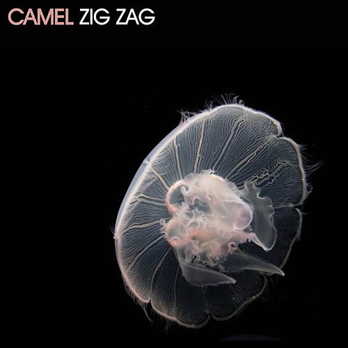 Play & Download Zig Zag EP by Camel | Napster