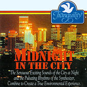 Midnight in the City by Murdo Mcrae