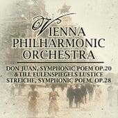 Play & Download Don Juan, Symphonic Poem, Op. 20 & Till Eulenspiegels Lustice Streiche, Symphonic Poem, Op. 28 by Vienna Philharmonic Orchestra   Napster