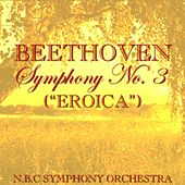 Play & Download Beethoven Symphony No.3 (