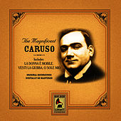 Play & Download Magnificent Caruso by Enrico Caruso | Napster