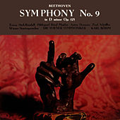 Beethoven Symphony No 9 in D Minor by Vienna Symphony Orchestra