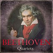 Play & Download Beethoven - Quartets by Fine Arts Quartet | Napster