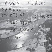 Play & Download Oppkok by Bjorn Torske | Napster