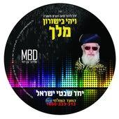 Play & Download Yachad by Mordechai Ben David | Napster