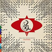 Play & Download Anatomic by The Afro Celt Sound System | Napster