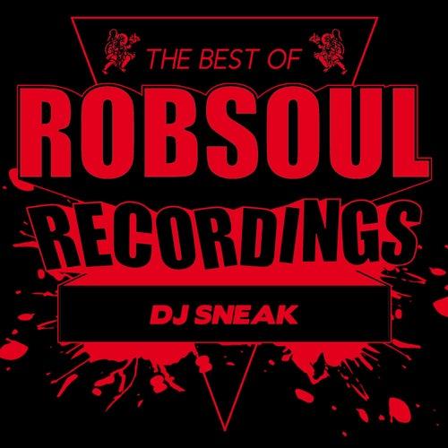 Best of DJ Sneak by DJ Sneak