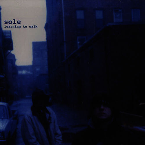 Play & Download Learning To Walk by Sole | Napster