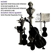Play & Download Mozart Quintets by Budapest String Quartet | Napster