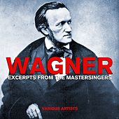 Play & Download Wagner Excerpts From The Mastersingers by Various Artists | Napster