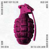 What They Tell Me / Boom von Various Artists