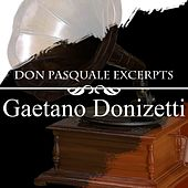 Play & Download Don Pasquale Excerpts by Various Artists | Napster