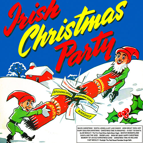 Play & Download Irish Christmas Party by Various Artists | Napster