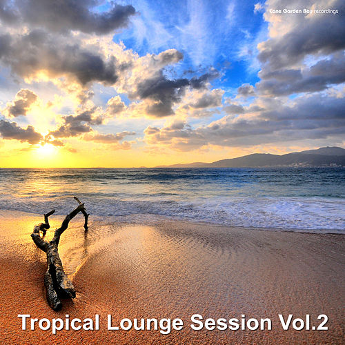 Tropical Lounge Session, Vol. 2 by Various Artists