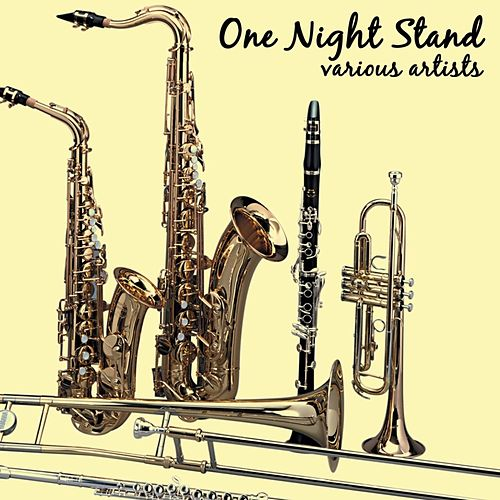 Play & Download One Night Stand by Various Artists | Napster