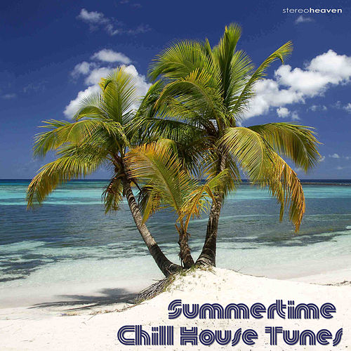Summertime Chill House Tunes by Various Artists