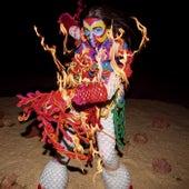 Earth Intruders Club Mixes von Björk
