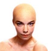 Hunter (Version 3) von Björk